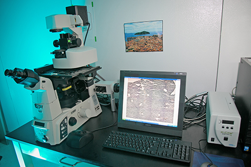 Applied Biosciences System