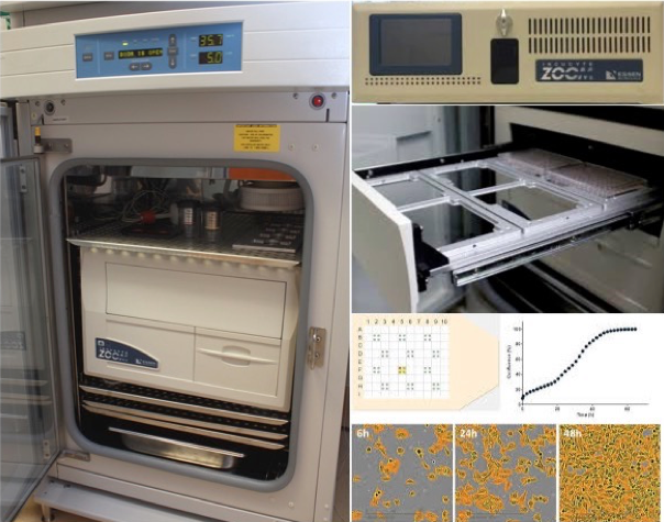 Essen Bioscience Continuous Live-cell Imaging & Analysis System